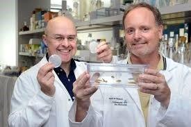 Pierre Drapeau et son collègue Dr Alex Parker.